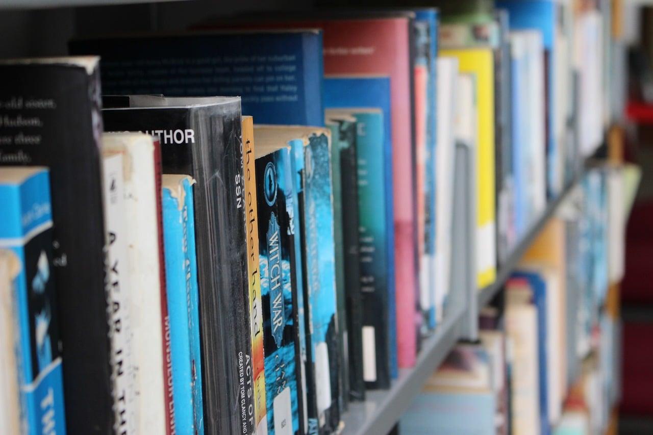 100 מקורות מהספרות המדעית - שינוי משיכה מינית בטיפול פסיכולוגי